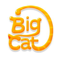 Big Cat Studio